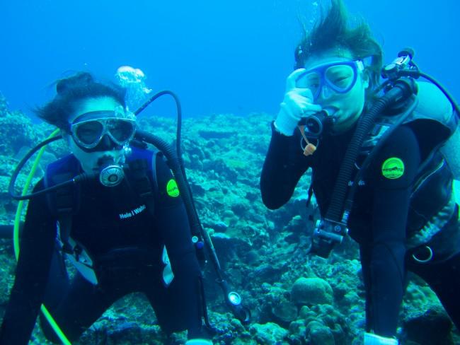 体験ダイビングで楽しい水中を