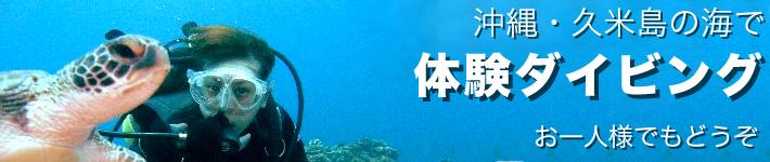 久米島の体験ダイビングはドラゴンナイト
